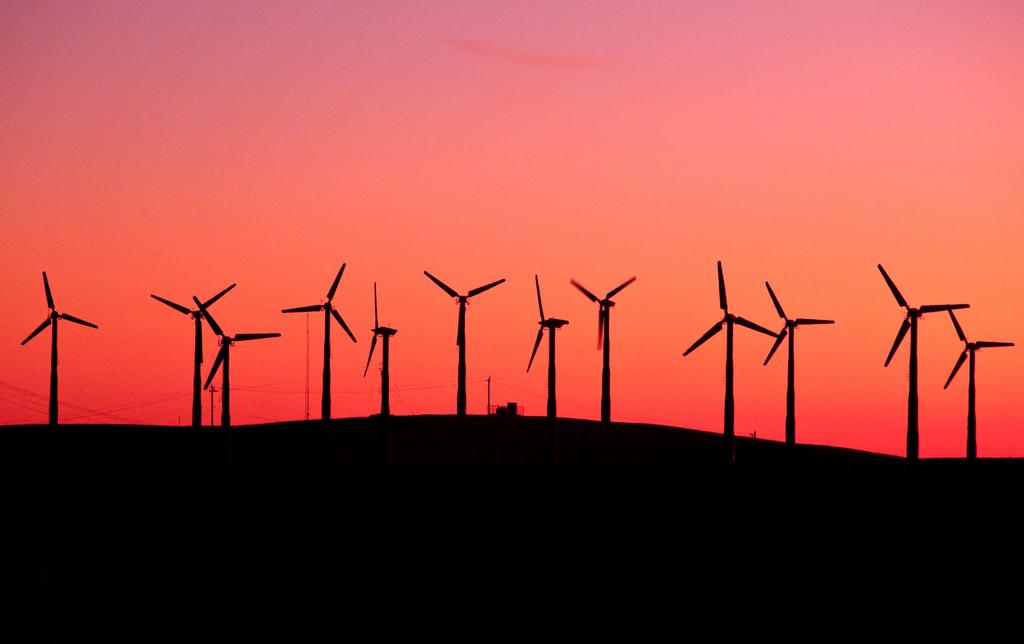 Business Spotlight: 3D Windmills