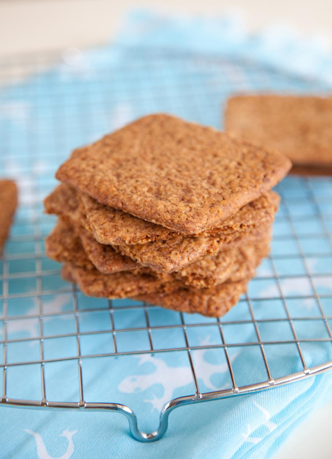 For such a beloved snack, the beginnings of graham crackers have a strange inspiration.      Image courtesy of CanStockPhoto.com