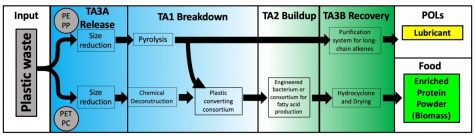 The process of taking plastic waste and converting it into protein powder and lubricant