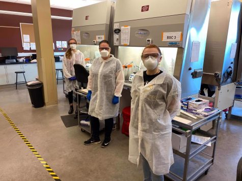 Medical Laboratory Science students and SMLS members (from left to right) Jenna Disser, Jessica McQuinn and Kacie Ziolkowski are seen here working in Michigan Tech's on-campus COVID-19 lab.