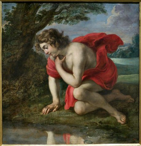 Narcissus and his pool or me and my zoom square? Trick question! We are the same.